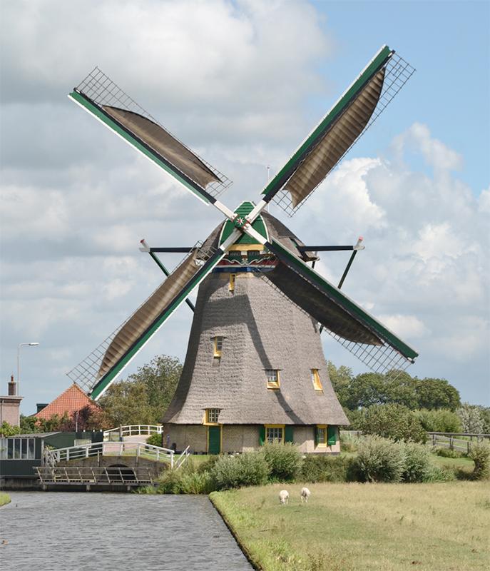 Dijkmolen, Maasland, Foto: Rob Pols (29-7-2015)