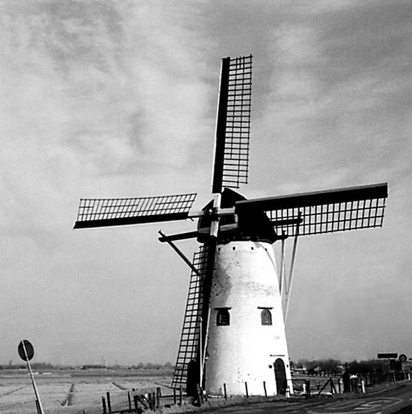 De Swaen (v/h Windlust), Nieuw-Beijerland, Foto: W. de Jonge (aug. 1976).