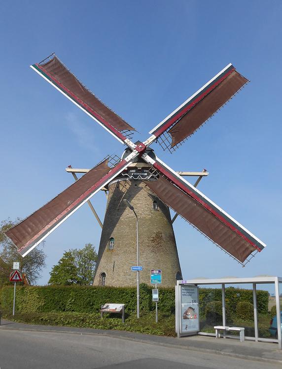 d'Oranjeboom, Nieuwe-Tonge, Foto: Frank Moerland (2-5-2015).