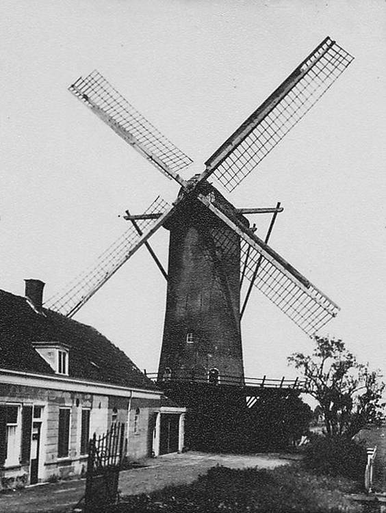 De Speelman, Rotterdam-Overschie, De molen - toen nog De Hoop geheten - op de oude plaats.  Foto: n.n., ca. 1930 (coll. Rob Pols).