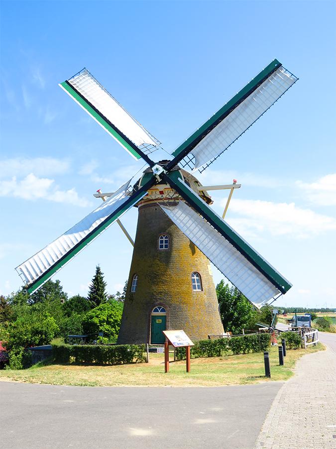 De Lelie, Puttershoek, Foto: Tony Hop (21-5-2016) Bij recente werkzaamheden is de voorzoom van de molen weer groen geschilderd, zoals vroeger ook het geval was. De witte zeilen zijn nog échte katoenen exemplaren (uit 1955).