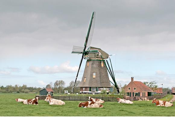 Waterloosmolen, Rijpwetering, Foto's: Ton Koorevaar (4-5-2010)