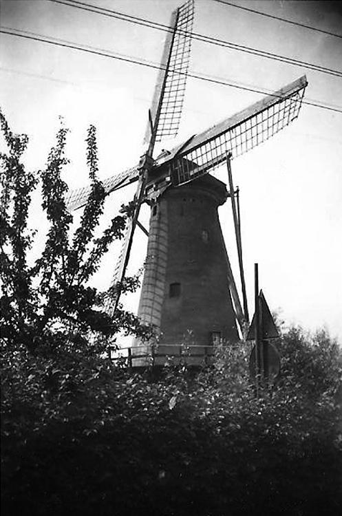 De Hoop, Rozenburg, Foto n.n., datum onbekend (coll. Rob Pols).