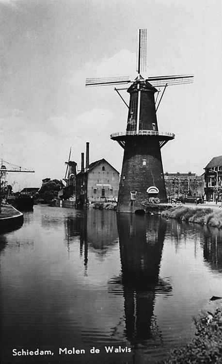 De Walvisch, Schiedam, Foto uit de tijd dat het wiekenkruis was verbusseld.  Foto n.n., collectie Rob Pols.