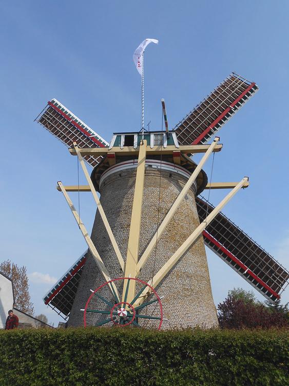 De Korenaar, Stad aan 't Haringvliet, Foto: Frank Moerland (2-5-2015).