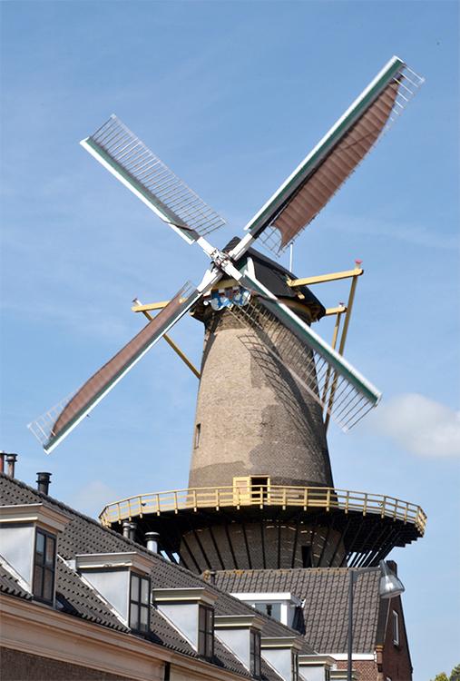 Aeolus, Vlaardingen, De molen gezien vanaf de Kortedijk, malend op het zuiden.Foto: Rob Pols (17-7-2015)
