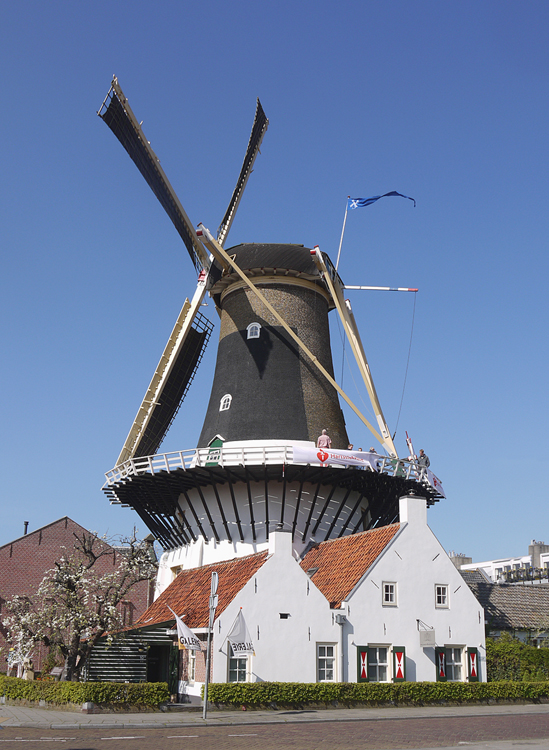 Windlust, Wassenaar, Foto: Matthieu Hoogduin (5-4-2014).