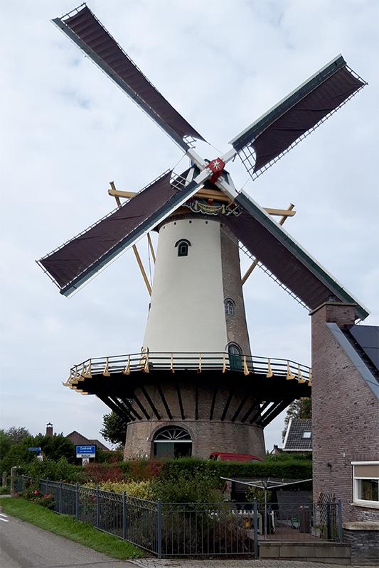 De Arend, Zuidland, Foto: Marcel van Nies (14-8-2016)  Na eerder de binnenroede is nu de buitenroede gestreken.
