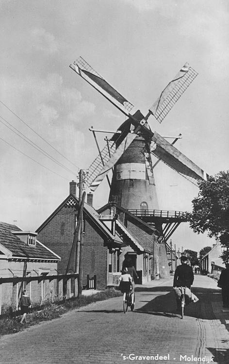 Het Vliegend Hert, Gravendeel,