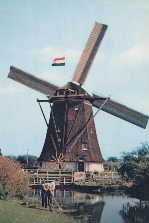 Laakmolen / Galgemolen, Den Haag / s-Gravenhage, Oude foto van De Laakmolen met volledige verdekkering, verder commentaar overbodig!  Foto n.n., ingezonden door Arie Hoek.