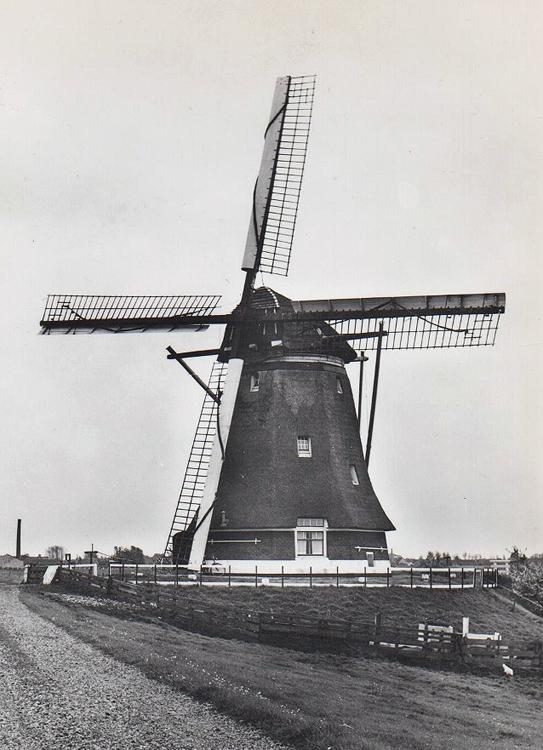 Vrouwgeestmolen, Alphen aan den Rijn, De molen nog met Prinsenmolen-systeem op de buitenroede en Fauël-systeem op de binnenroede.  Foto: n.n. (ca. 1965), coll. Arie Hoek.