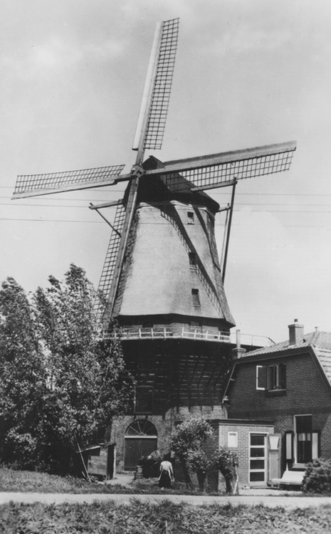 Jan van Arkel, Arkel, De molen nog met de Van Bussels.  Foto datum onbekend, ingezonden door Arie Hoek.