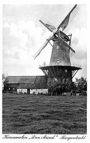 Den Arend, Bergambacht, Prachtige oude opname van Den Arend met drie stormeindjes.  Foto: ? (verzameling Rob Pols).