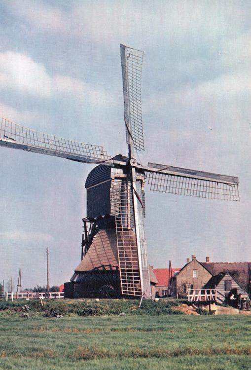 Hofwegensemolen, Bleskensgraaf, De molen nog met scheprad en oudhollands tuig.  Foto jaren vijftig, ingezonden door Arie Hoek.