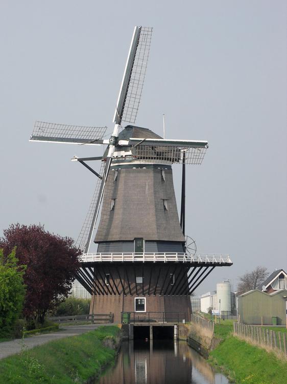 De Nieuwlandse Molen, Hoek van Holland, Foto: Jan Puts (2-4-2014).