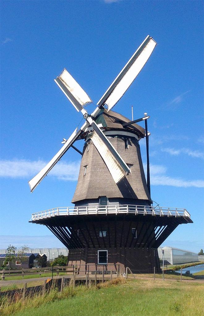 De Nieuwlandse Molen, Hoek van Holland, Foto: Luc Ruijgt (19-7-2015)