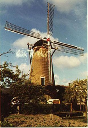 De Hoop, Ouddorp, Foto: Rein Arler (2-5-1981). De Hoop duidelijk aan restauratie toe!