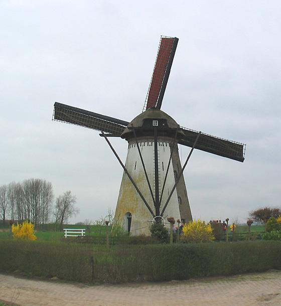 De Marsch, Lienden, Anja Hoogduin (22-4-2006) | Database Nederlandse molens