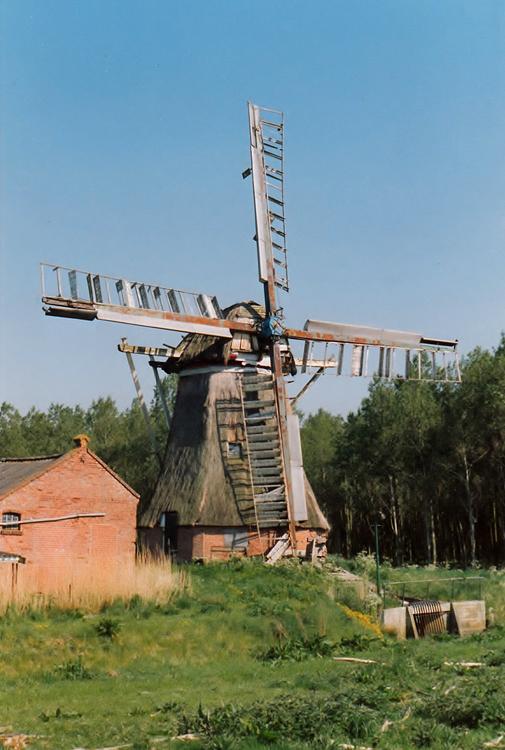 Kloostermolen, Garrelsweer, Nog in zwaar vervallen toestand met het vermaledijde bos op de achtergrond.  Hans Wolthuis (juli 1988) | Database Nederlandse molens