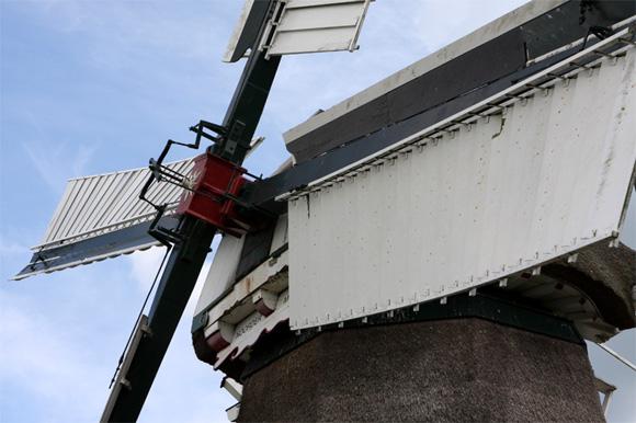 Noordermolen, Noorddijk, Edo Werkman (15-06-2008).   Database Nederlandse molens
