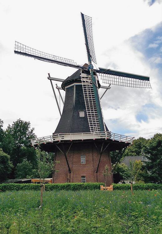 De Korenbloem, Vriescheloo, Martijn Scholtens (7-1-2014). | Database Nederlandse molens