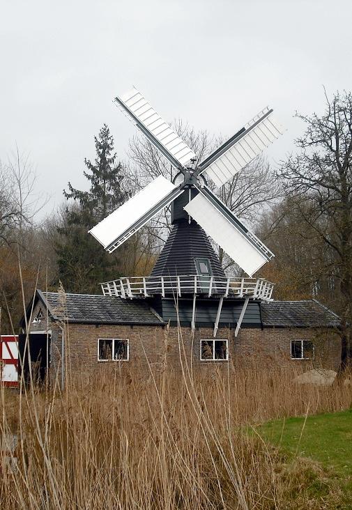 (spinnenkop), Wedderveer, Rob Hoving (2-2-2011) | Database Nederlandse molens