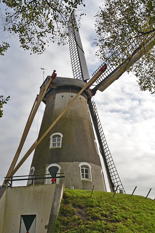 Aarssensmolen / De Dageraad, Zeeland, Rob Pols (23-10-2014). | Database Nederlandse molens