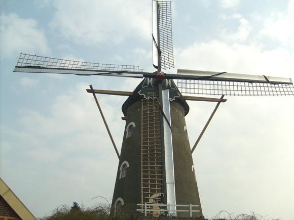 Coppensmolen, Zeeland, De molen met zijn nieuwe Van Bussel-wieksysteem.  Vincent Mepschen (21-3-2007).  | Database Nederlandse molens