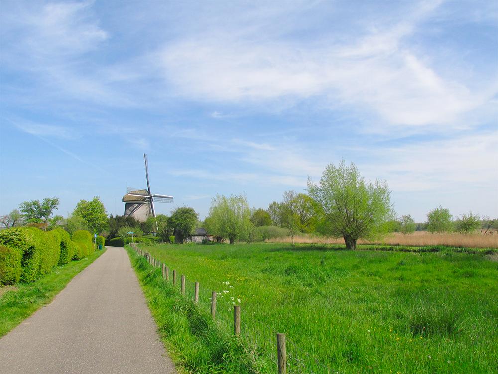 Nederhorst Den Berg Nederland.Poldermolen Nederhorst Den Berg Nederlandse Molendatabase