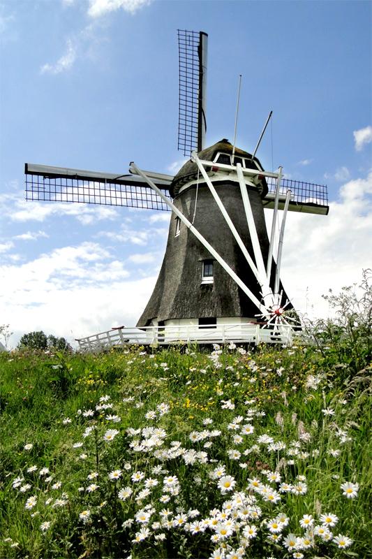 D Olde Zwarver, Kampen, Christina Zoet (22-5-2011). | Database Nederlandse molens