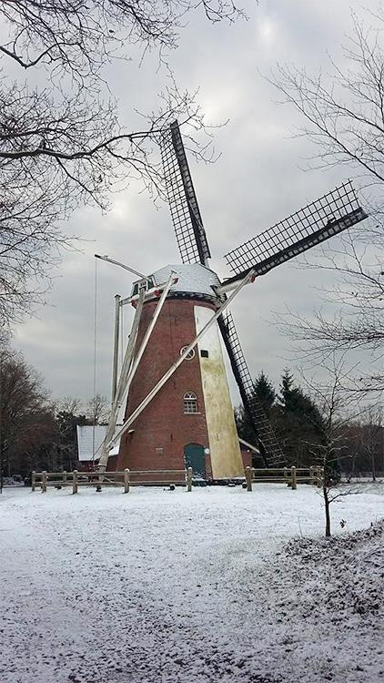 Soaseler Möl, Saasveld, Marc Kleissen (17-1-2016) | Database Nederlandse molens
