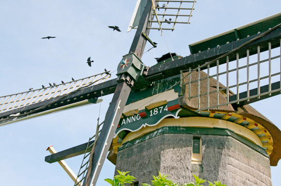Hoekermolen, Vreeland, Ton Koorevaar (22-6-2010)   Database Nederlandse molens