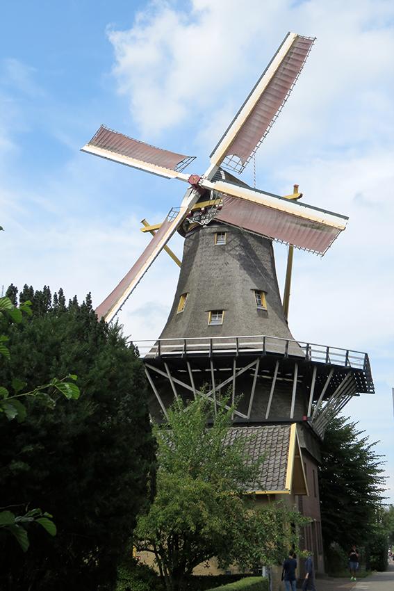 De Ster Rotterdam Kralingen Nederlandse Molendatabase