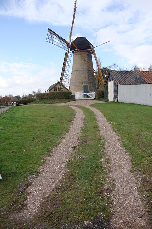 (stenen grondzeiler), Oostvoorne, Jorrit de Laat (16-7-2016). De molen met het pas gereconstrueerde pad naar de molen en de gekapte bomen op het noorden. ook het groene hek is verwijderd.   Database Nederlandse molens