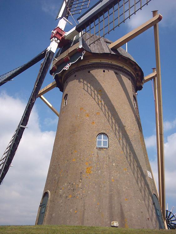 Simonia, Piershil, Rob Simons (17-8-2005). Hier ontbreken de opschriften op de baard nog.  | Database Nederlandse molens