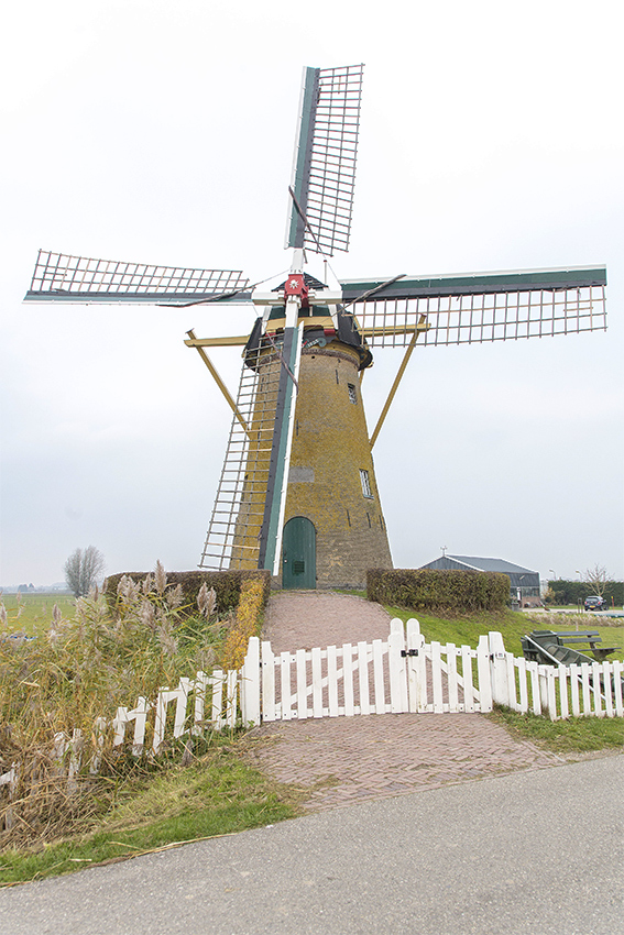 De Kersenboom, Rijsoord, Frank Hendriks (22-11-2018) | Database Nederlandse molens