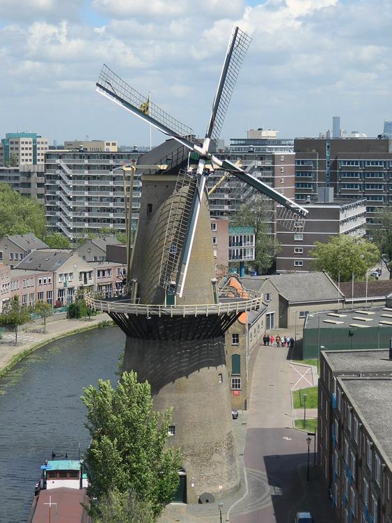 De Palmboom, Schiedam, Vincent Mepschen (15-6-2013). | Database Nederlandse molens