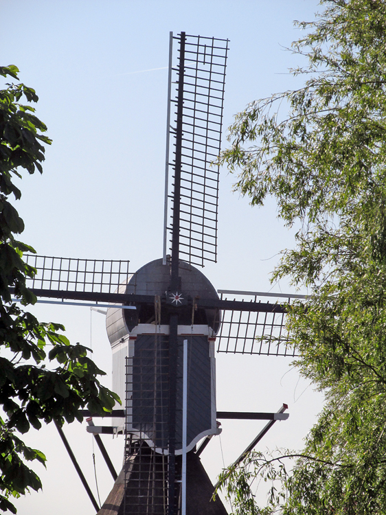 Geremolen / Blauwe Wip, Hazerswoude-Dorp, Piet Glasbergen (4-6-2013). Let op de voorzoom, die geheel op scheerhouten en niet op de hekkens is bevestigd.  | Database Nederlandse molens